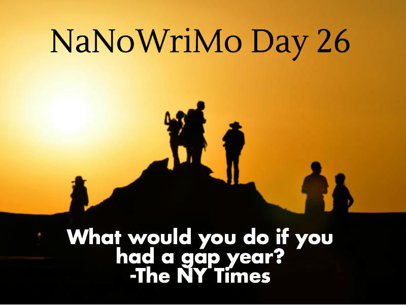 What would you do if you had a gap year? NaNoWriMo Day 26