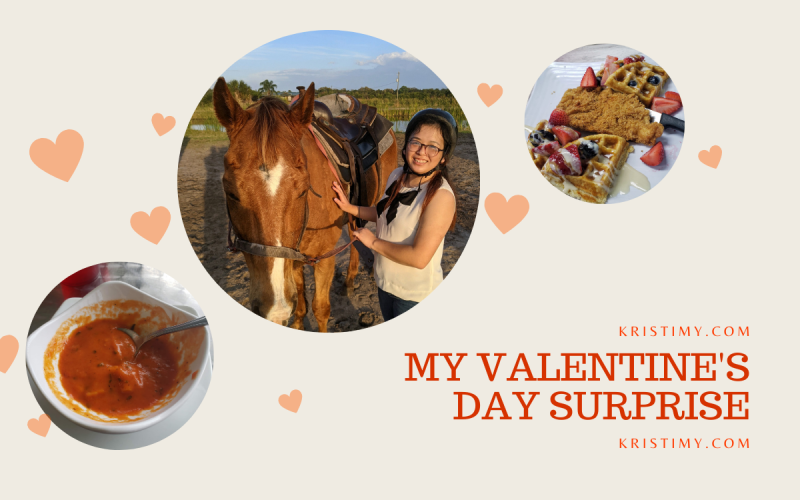 My Valentine's Day Surprise Header Image