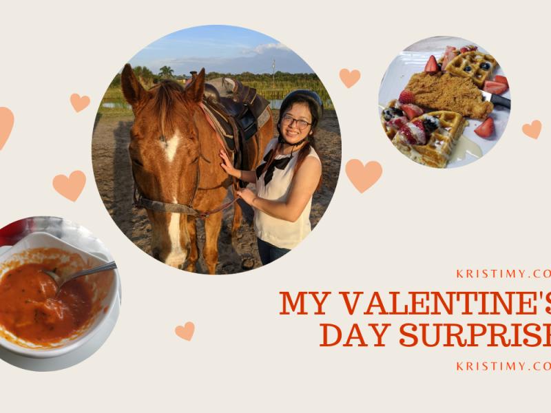 My Valentine's Day Surprise Header Image