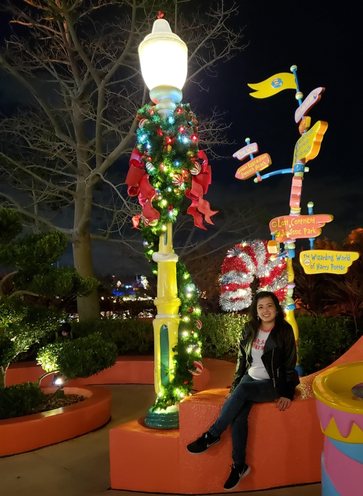 I love the festivities and cheer that the holidays can bring! The bright colors make it even better when you visit the parks. But it can also be very crowded and overwhelming.